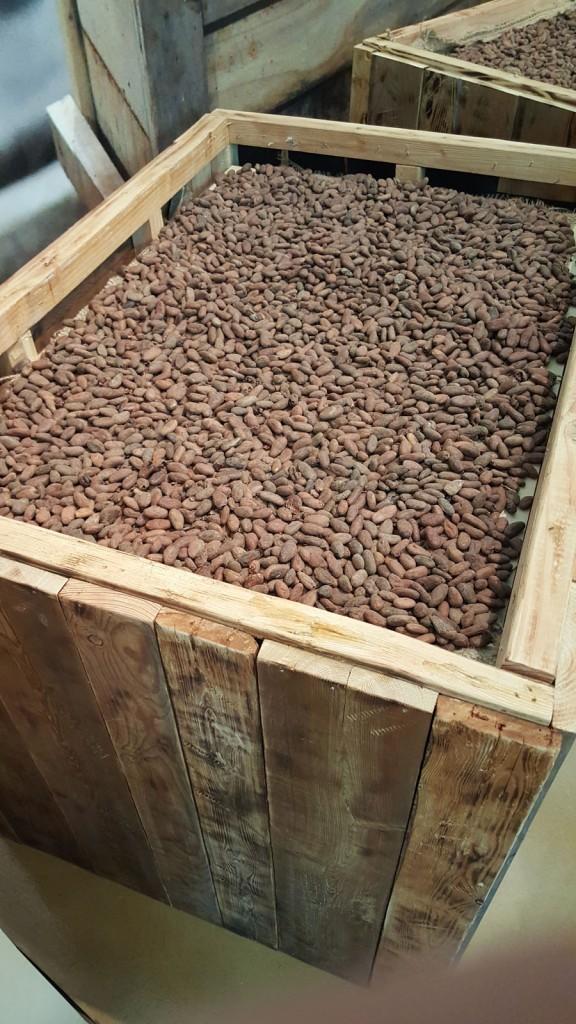 4 Cacao Nibs